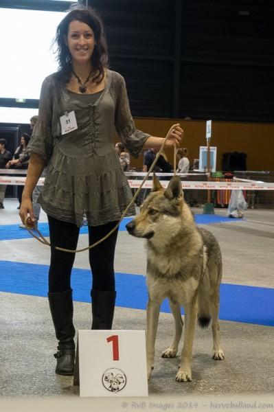 Expo Canine Metz-1