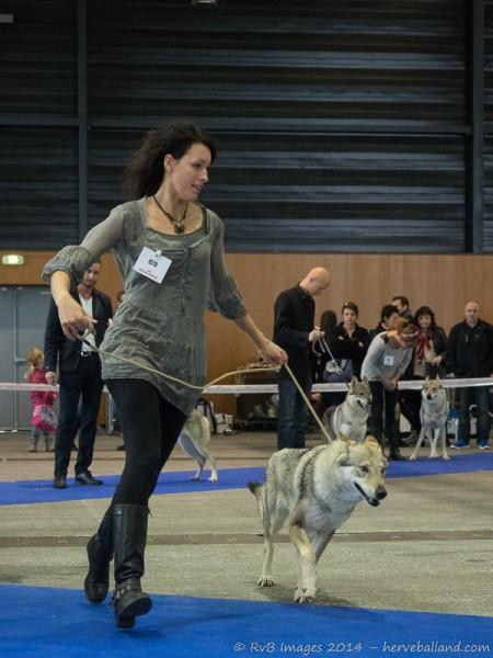 Expo Canine Metz-21