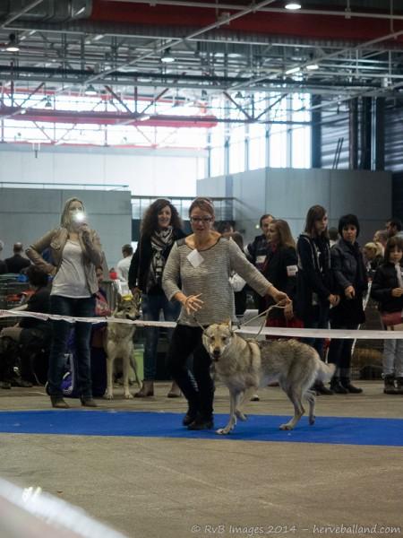 Expo Canine Metz-23