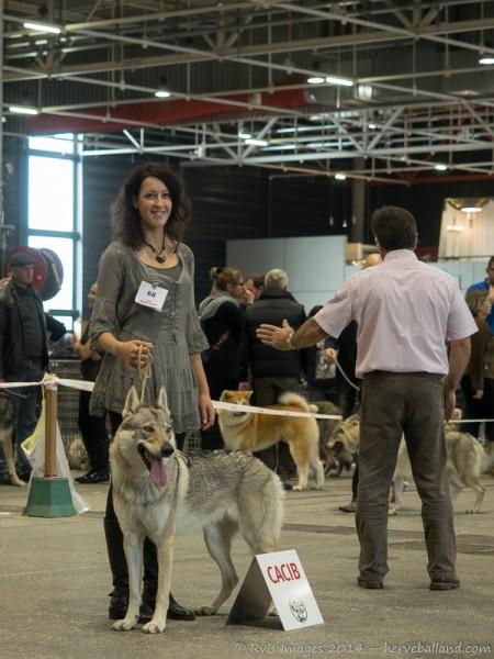 Expo Canine Metz-31