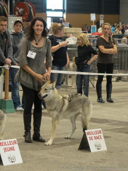 Expo Canine Metz-33
