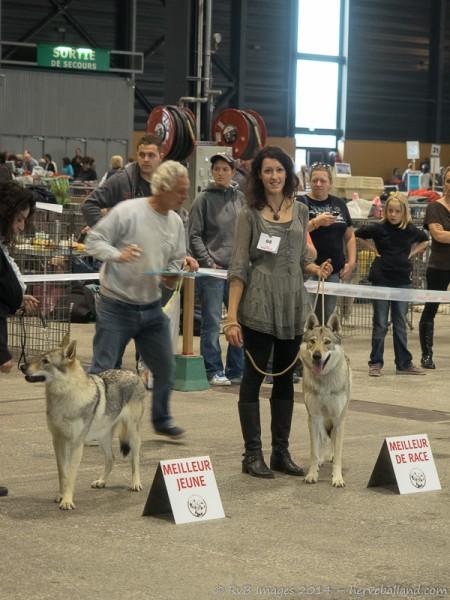 Expo Canine Metz-35