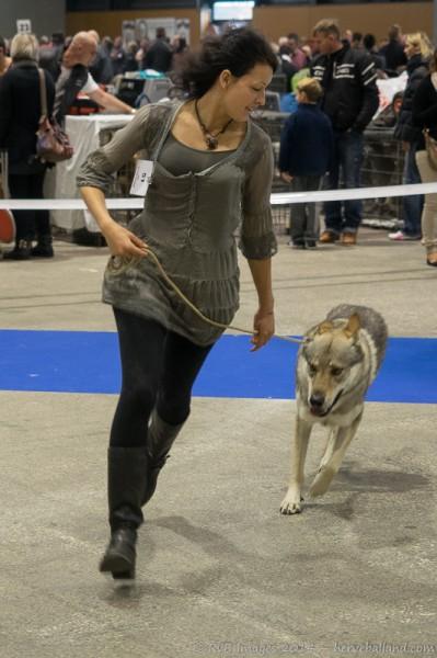 Expo Canine Metz-4